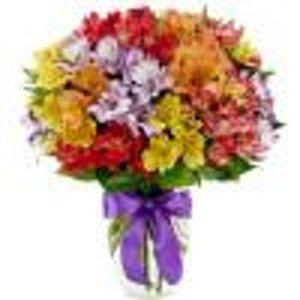 Premium Florist