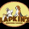Lapkin's