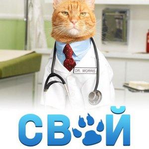 Свой доктор