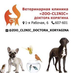 Зоо-Клиник Доктора Корягина