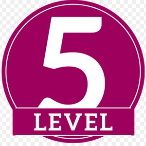 Знаток 5 уровня