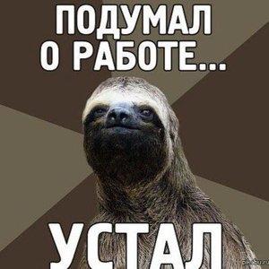 Жирный Ленивец