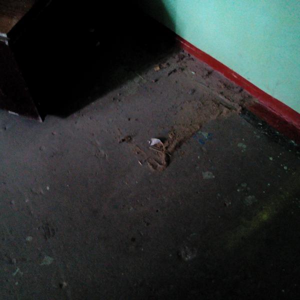 мусор после влажной уборки площадки 1 этажа 1 подъезда