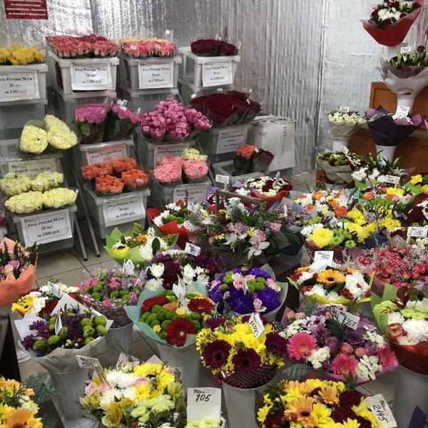 Оптовые продажи цветов в туле, любимый интернет