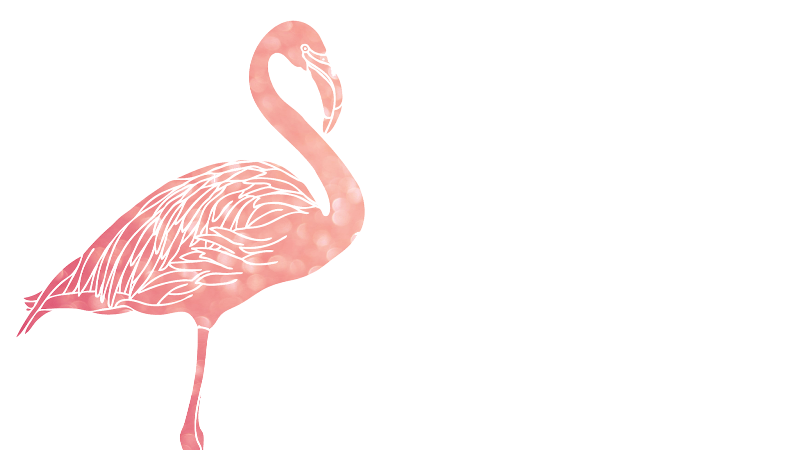 Flamingos Pictures Of Face Youtube - #GolfClub