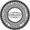 kanzler96.ru
