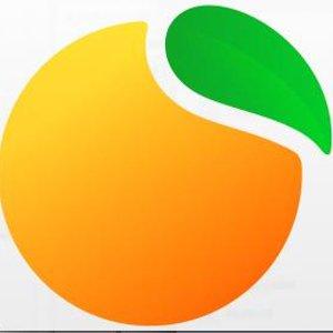 Пять мандаринов, ООО