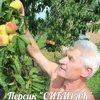 Алексей Васютинский