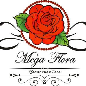 MEGA FLORA