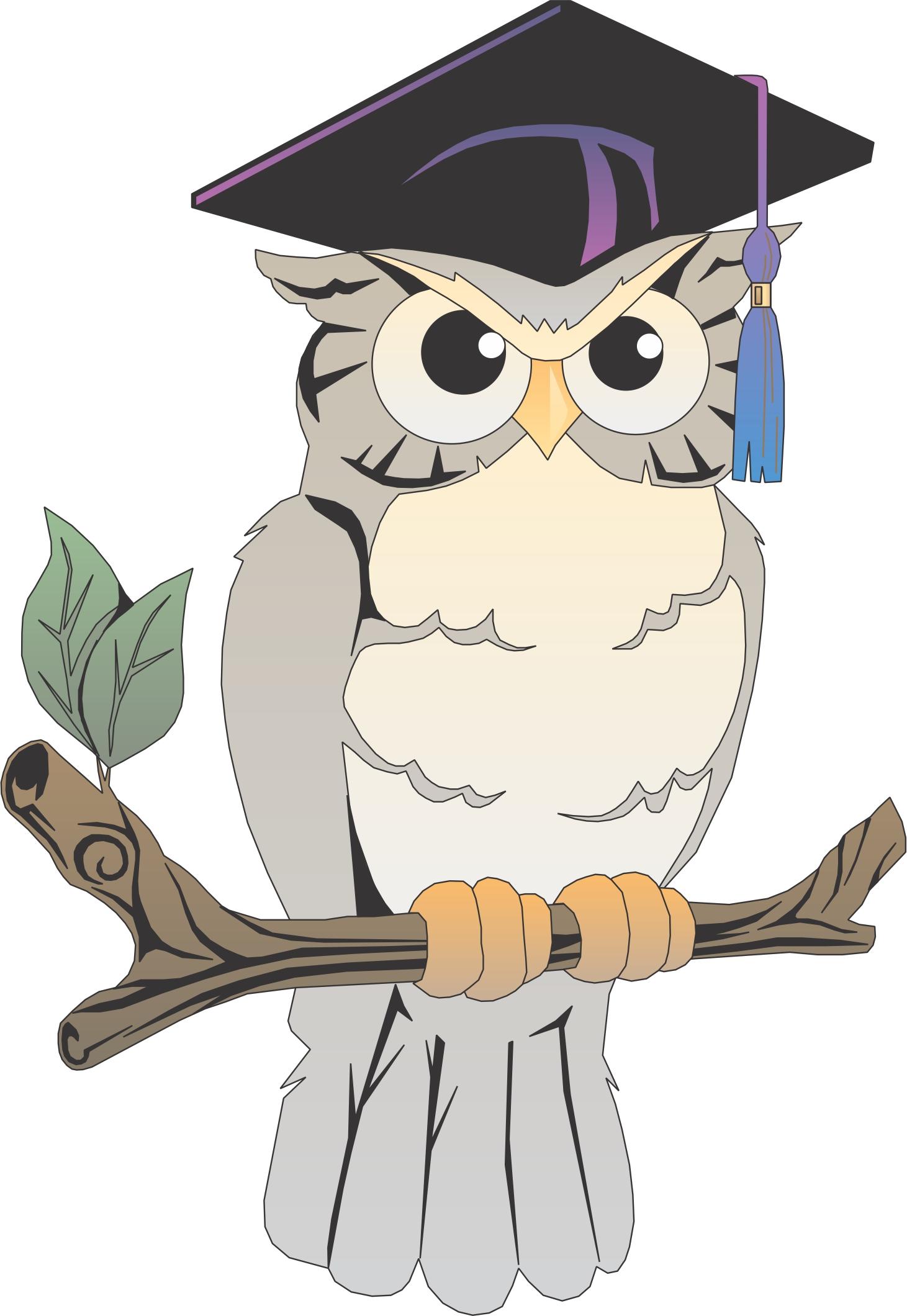 Анимацией лет, рисунок совы в шляпе магистра