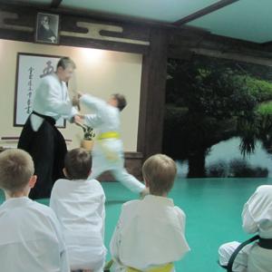 занятия в клубе Айкидо Дзикисинкай