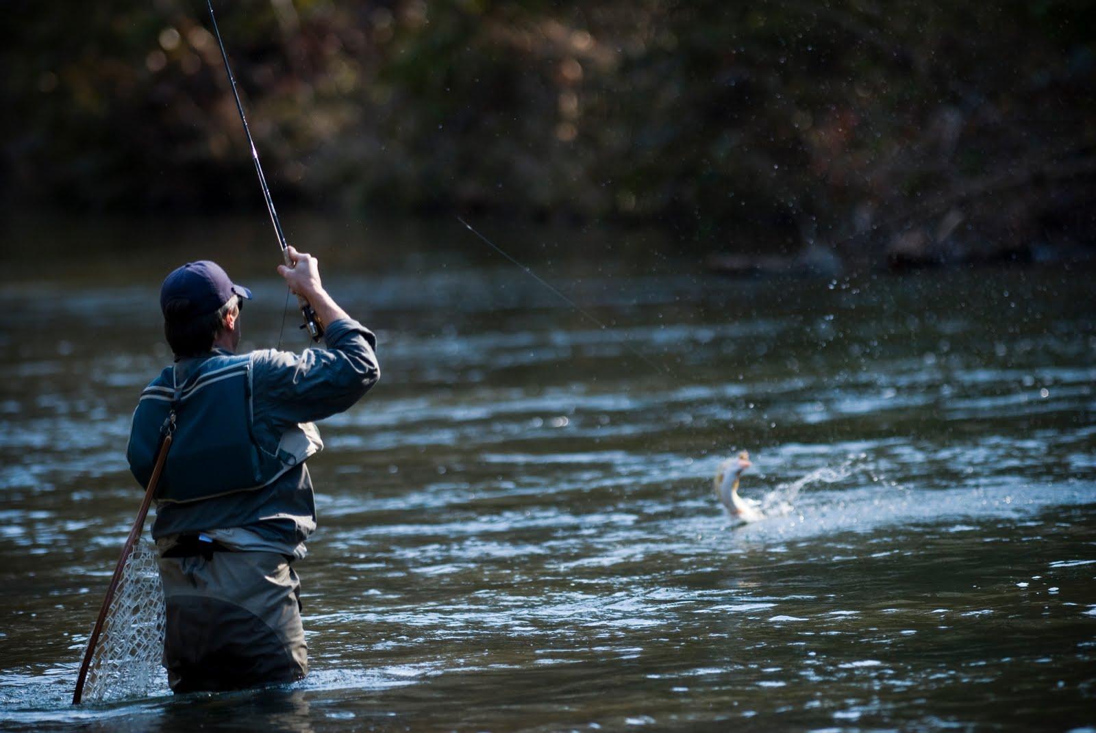 Как на речке поймать рыбу