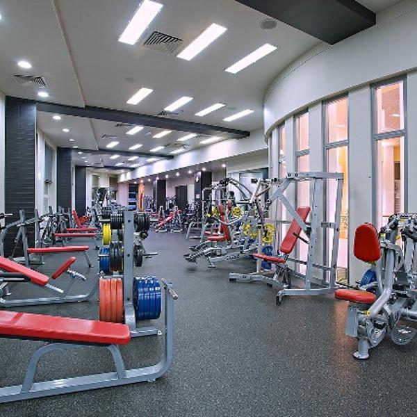 Тренажерный зал площадью 500 кв.м.: зона троссово-блочных тренажеров и зона свободных весов.