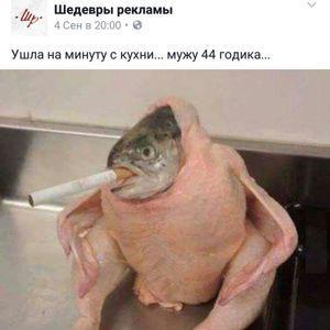 Владимир Николайчик