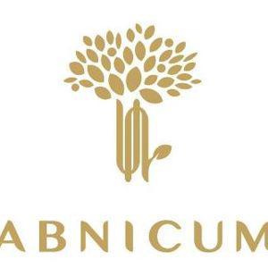 AbnicumAnna