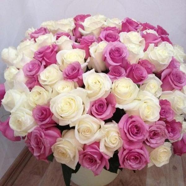 Мой шикарный букет из 101 розы!