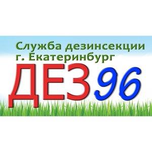 DEZ-96