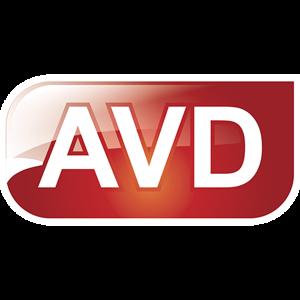 ЭйВиДи-систем
