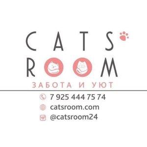 CATS`ROOM