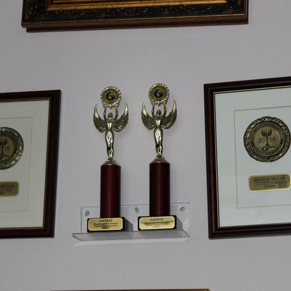Наши золотые медали и золотые статуэтки Гемма - 2014 и 2015 гг. !