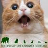Зоомакс
